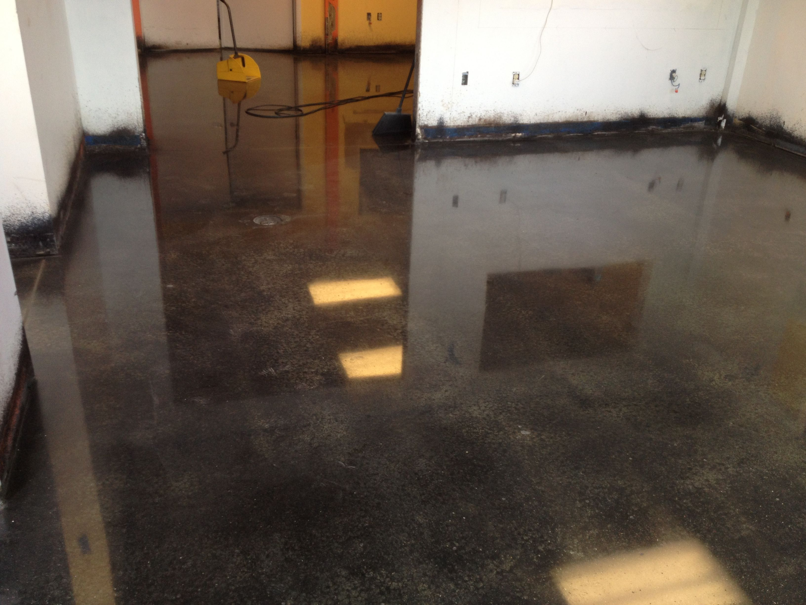 Polished concrete floor, black stain, and polished to a