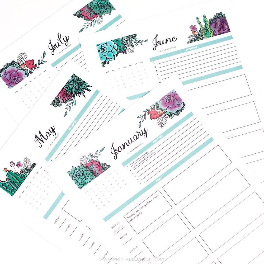 Succulents Editable 2018 Goal Tracker Printable Budget