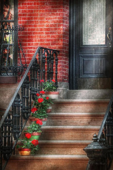$37 Mike Savad - Hoboken, NJ - Many old brownstones reside here. Some are bland and boring, most of them look alike. Each has it's share of fancy iron work in the rails. A few though have lovely flowers like these red geraniums. #savad #hoboken