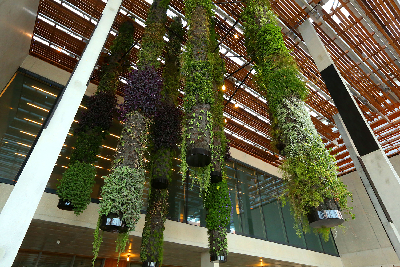 P Rez Art Museum Miami Landscape Design Pinterest