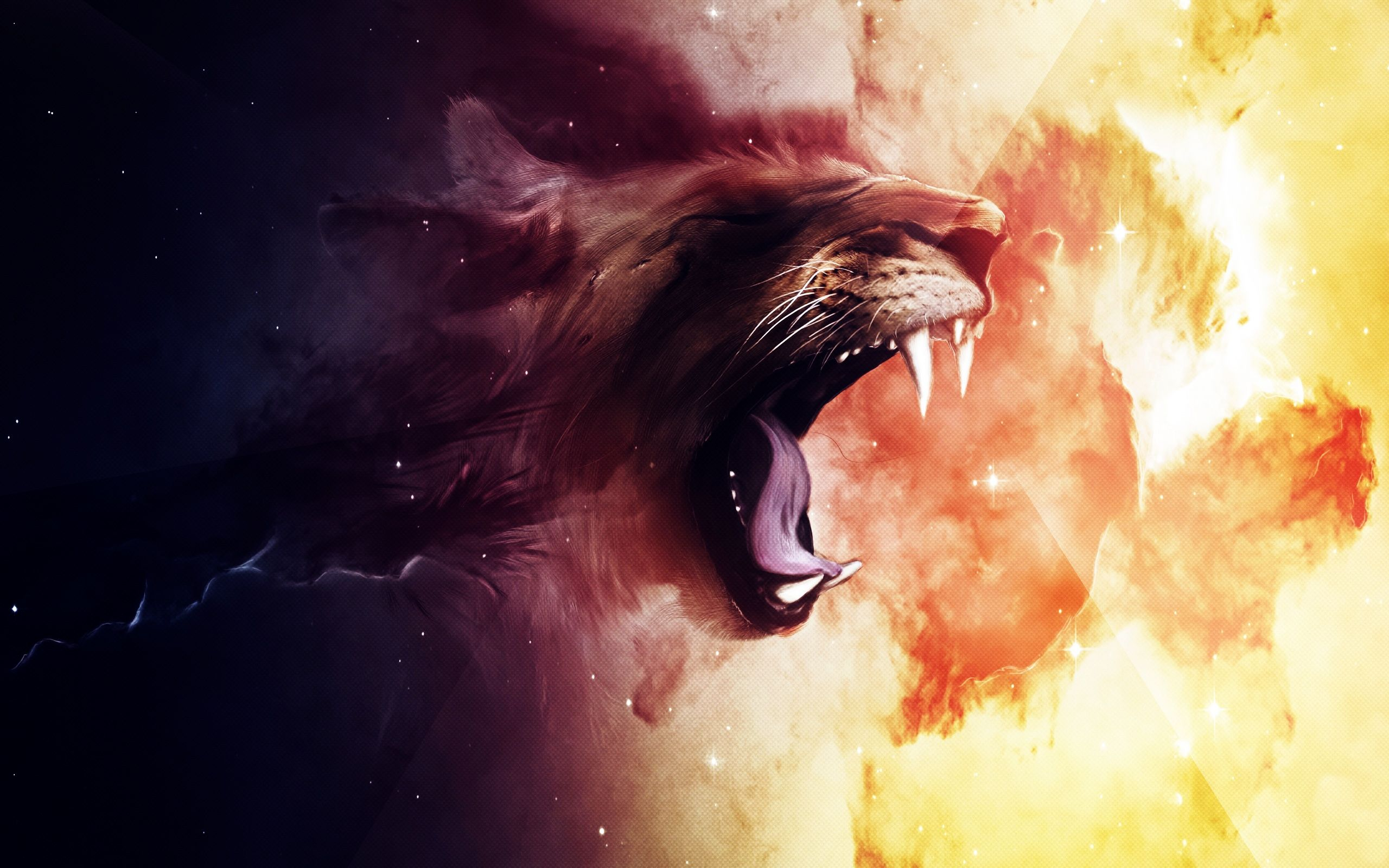 HD Lion Wallpapers Group