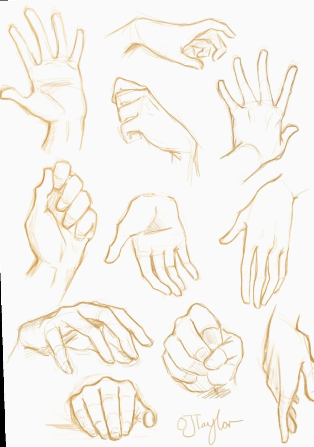 Anime Male Hands Google Search In 2020 Hand Drawing Reference Sketches Drawing Reference Poses