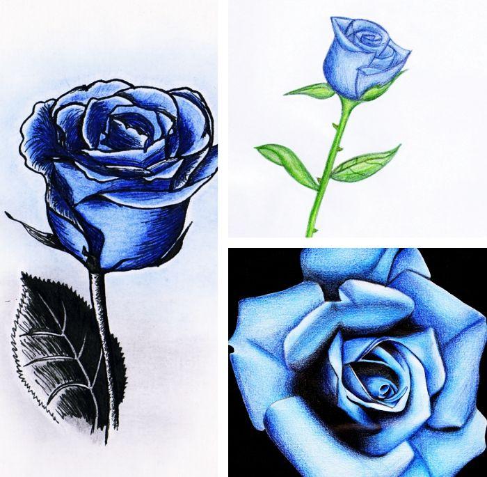 1001 mod les et conseils pour apprendre comment dessiner une rose art drawings tatoo rose - Rose a dessiner facilement ...