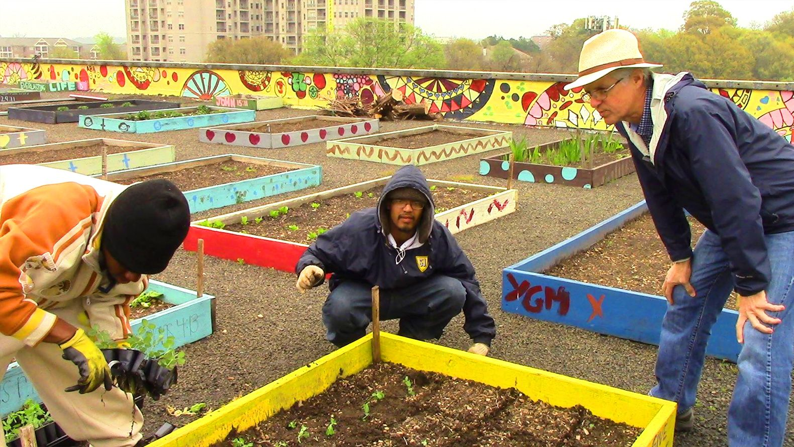 Homeless Folks Help Feed Their Entire Shelter With This Flourishing Rooftop Garden Homeless Shelter Ideas Rooftop Garden Homeless Shelter Design