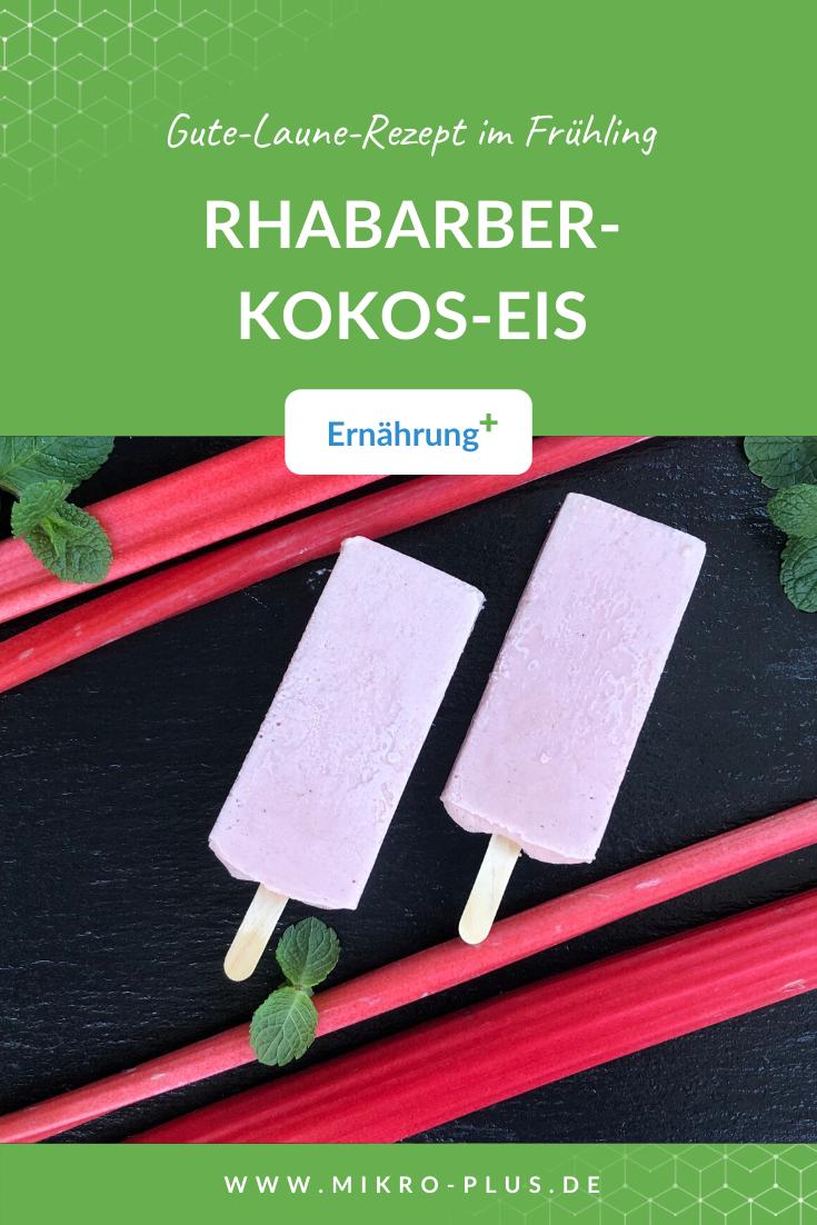 RHABARBER-KOKOS-EIS: Gute-Laune-Rezept zum Nachmachen