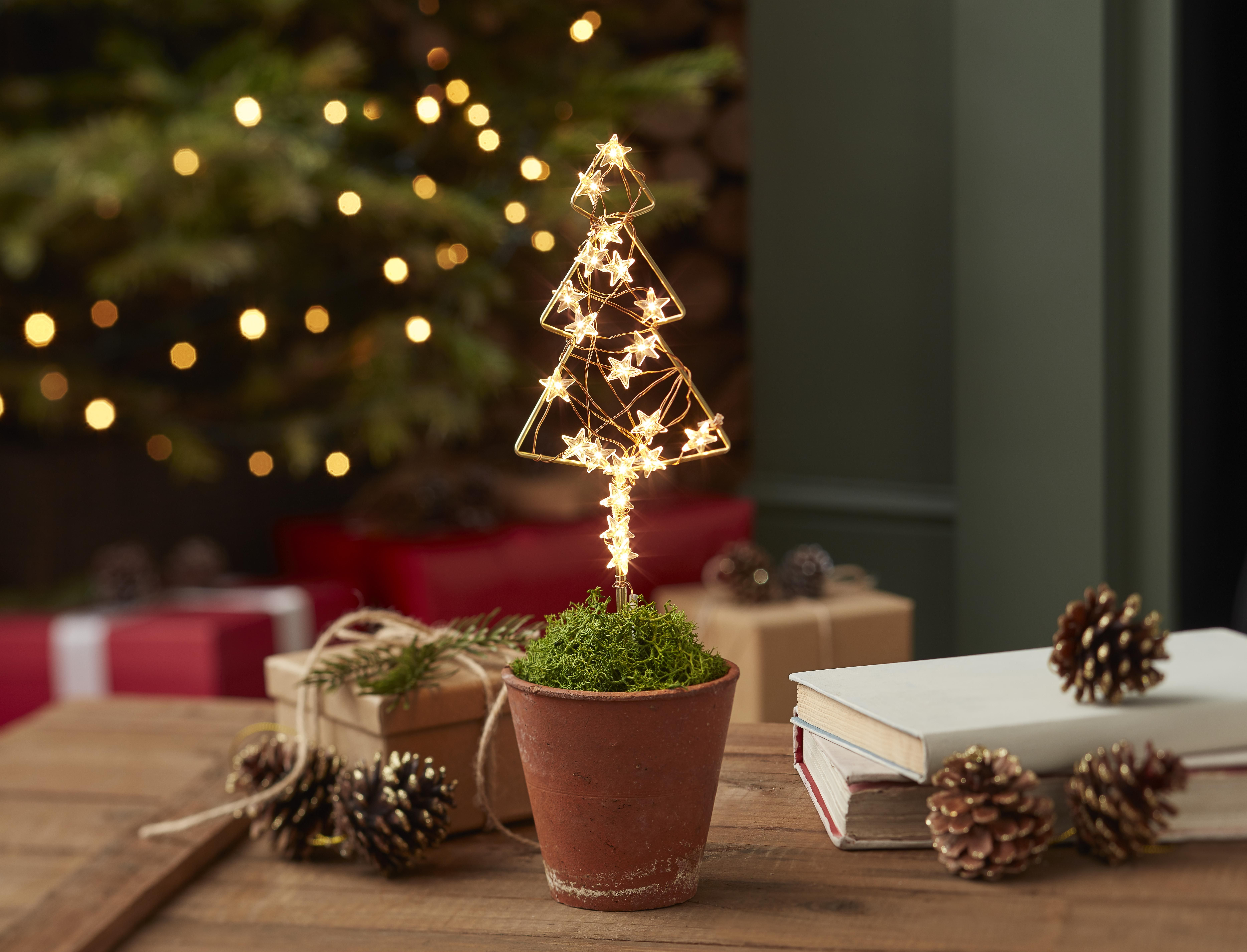 All We Want Need For Christmas Is This Cute Led Light Up Christmas Tree Standing Proud In It S Own Little Plant P Christmas Light Decorations Christmas Tree