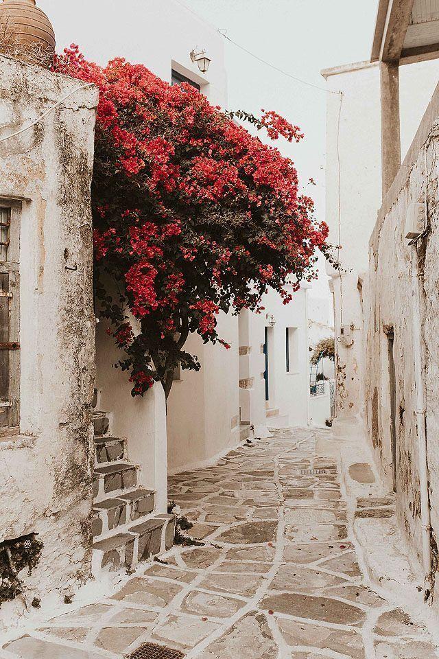 Meine Reise nach Paros | Bella Bucchiotti