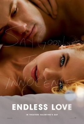 Endless Love movie poster (2014) Poster