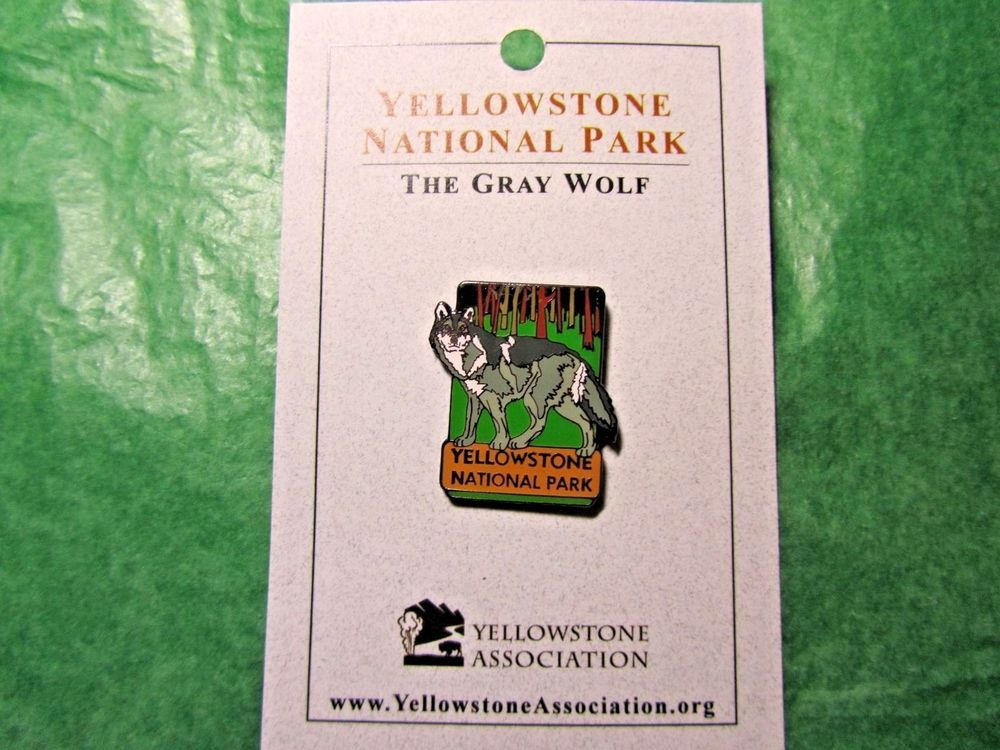 COLORADO STATE ROCKY MOUNTAIN NATIONAL PARK LAPEL PIN BADGE 1 INCH