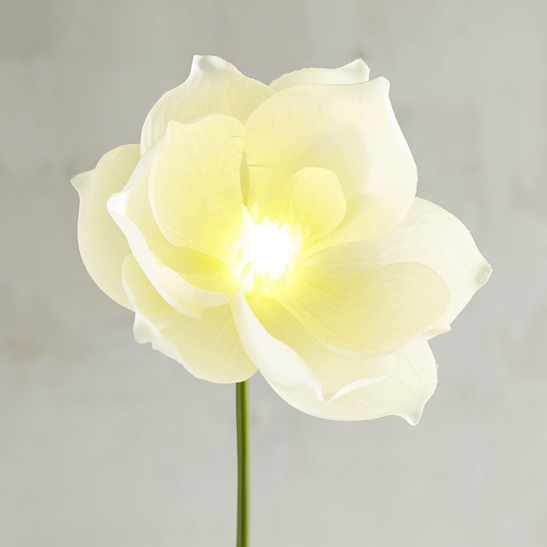 Bright blooms cream faux magnolia pre lit stem white products bright blooms cream faux magnolia pre lit stem white mightylinksfo