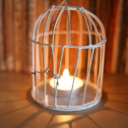 Light Cage!!
