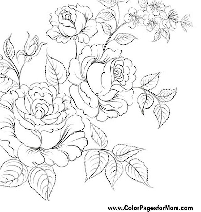 Flor para colorear Pgina 61 Colorear Pinterest Flower