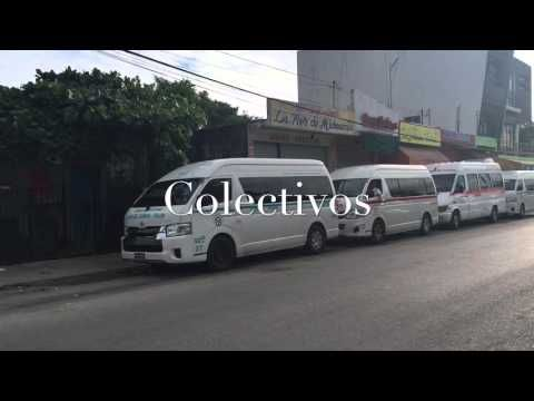 How to Take the Colectivos to Tulum or Cancun - Everything Playa Del Carmen