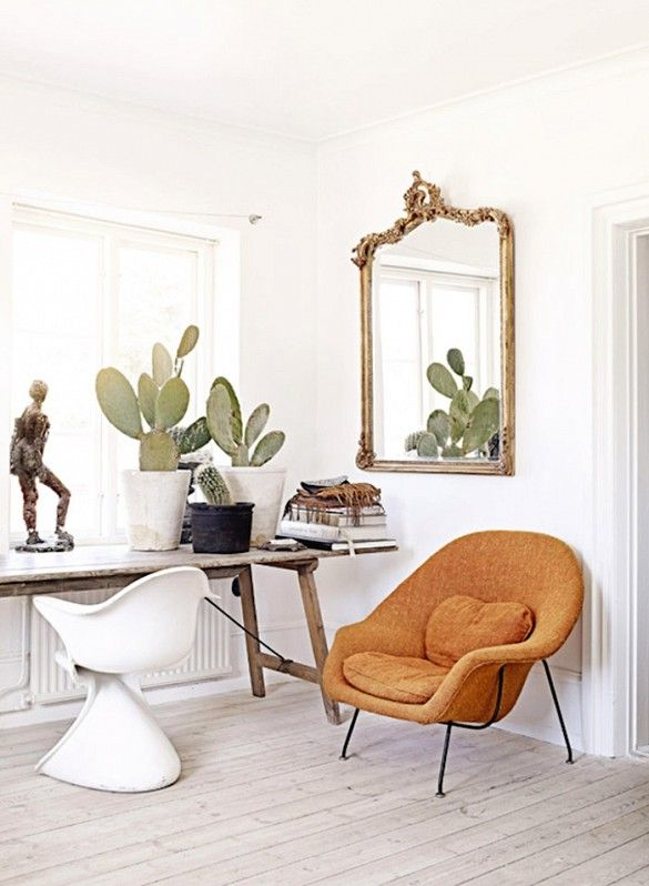 Tour a Swedish Stylist\u0027s Glamorous and Eclectic Home Cacti, Womb