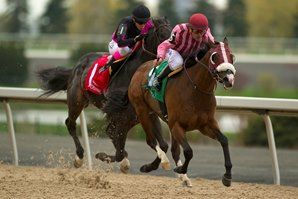 Passion for Action Takes Vigil Stakes
