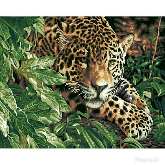 DIY Leopard Oil Painting By Numbers Acrylic Drawing On Canvas Home Office Decor