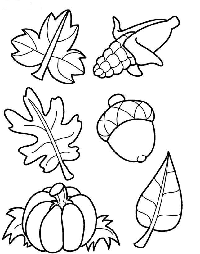 Dibujo de Hojas y frutos secos para colorear y pintar  otoo