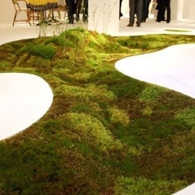 explore moss garden vertical gardens and more green moss carpet