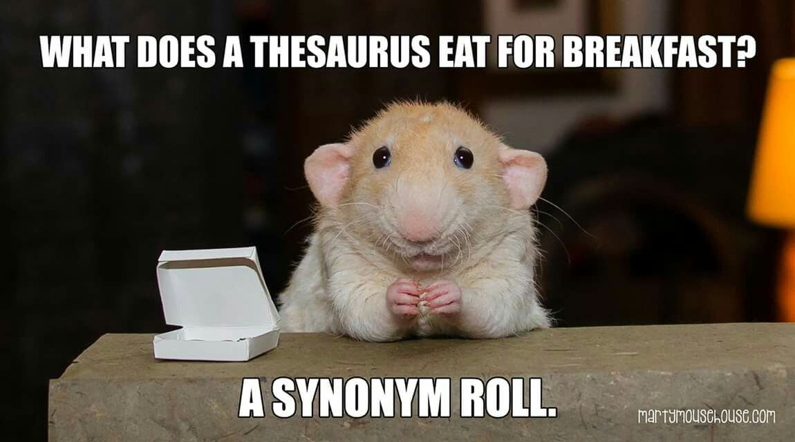 What did a thesaurus eat for breakfast? A synonym roll! | Cheesy ...