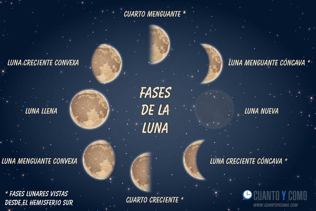 Cuánto Dura Cada Fase Lunar Entretenimiento Citas De Luna Calendario Lunar Lunas De Octubre
