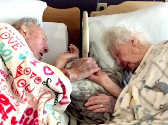 A fotografia foi registrada pela neta do casal e compartilhada no fórum…