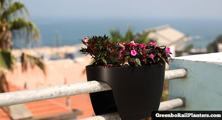 Greenbo Rail Planters Xl And Regular Window Planter Boxes
