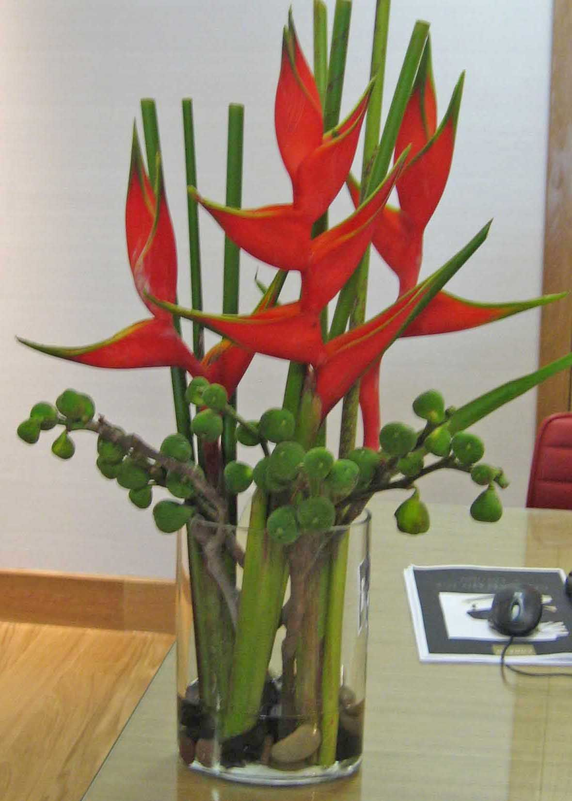 77VR Red Heleconia Bamboo Déco mariage Pinterest