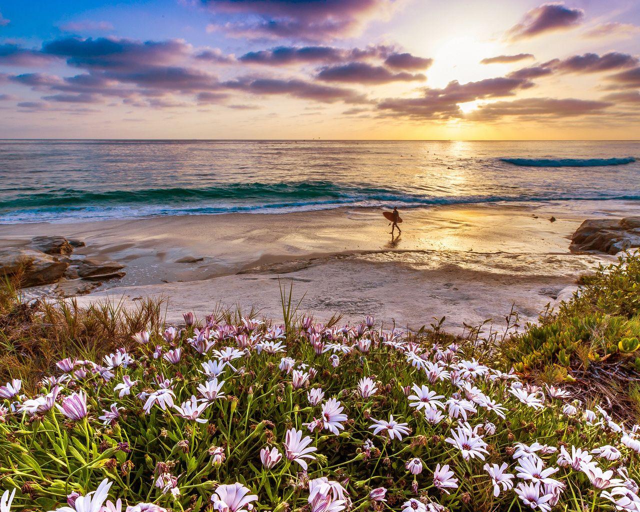 Картинки природа море цветы, сделать объемные открытки