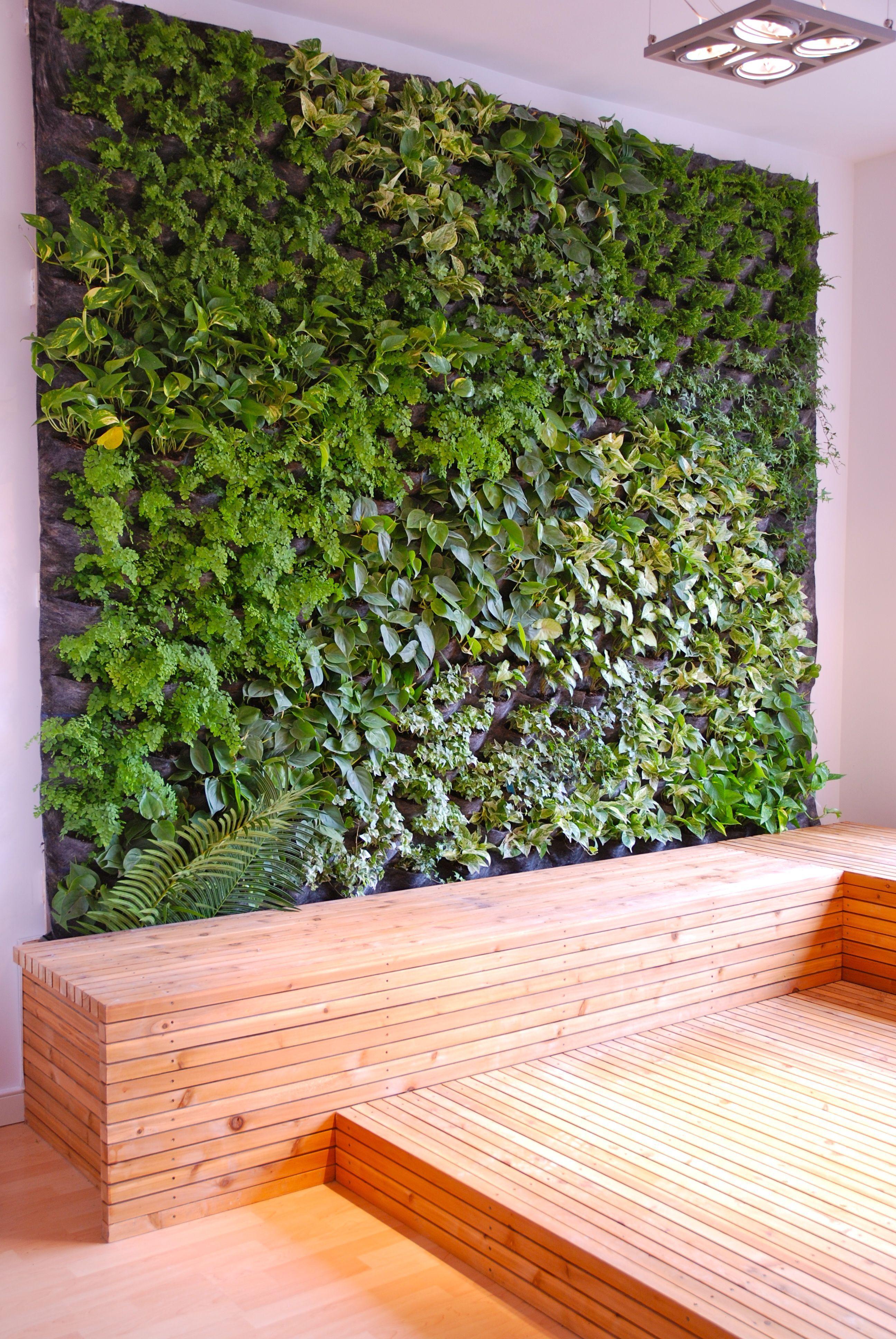 30 diy vertical garden design ideas for your home living walls vertical garden wall garden - Indoor plant wall diy ...