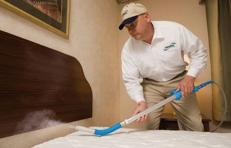 Bleach Spray To Get Rid Of Bed Bugs