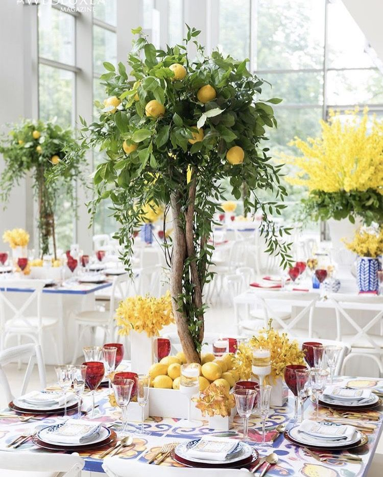 Lemon Tree Centerpieces By Rachel A Clingen With Images Tree