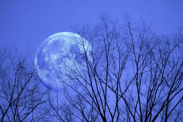 """There's A """"Blue Moon"""" This Friday - But What Does That Mean? 