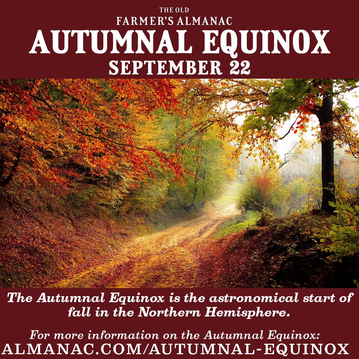 Fall Equinox 2020 Memes