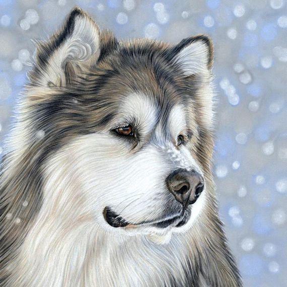 Alaskan Malamute Art Print Sepia Watercolor by Artist DJR