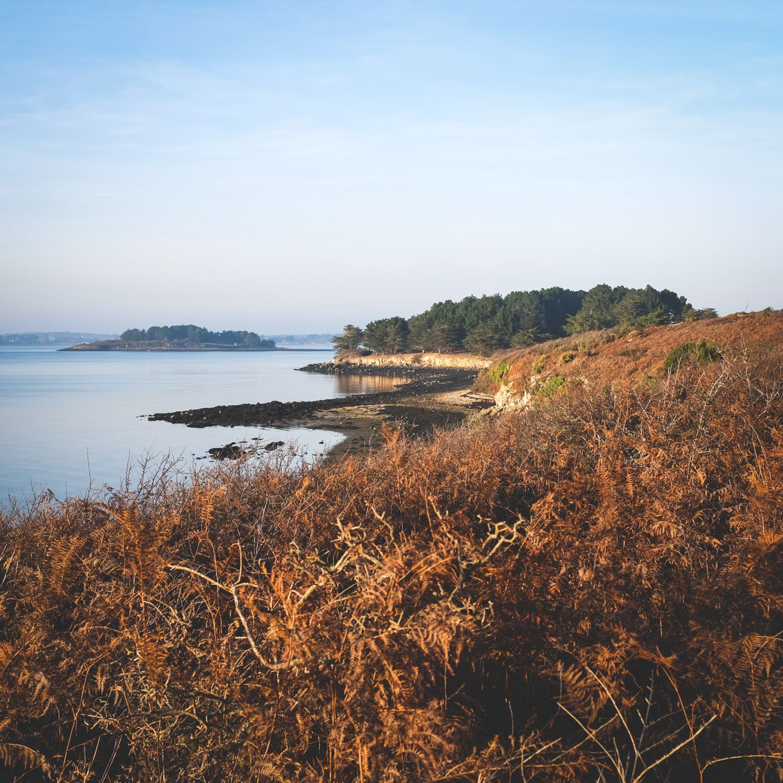 Pointe de Nioul - http://www.sebastiencaverne.fr/pointe-de-nioul/ #GolfeDuMorbihan, #ÎleAuxMoines, #Nature, #Visitgolfe