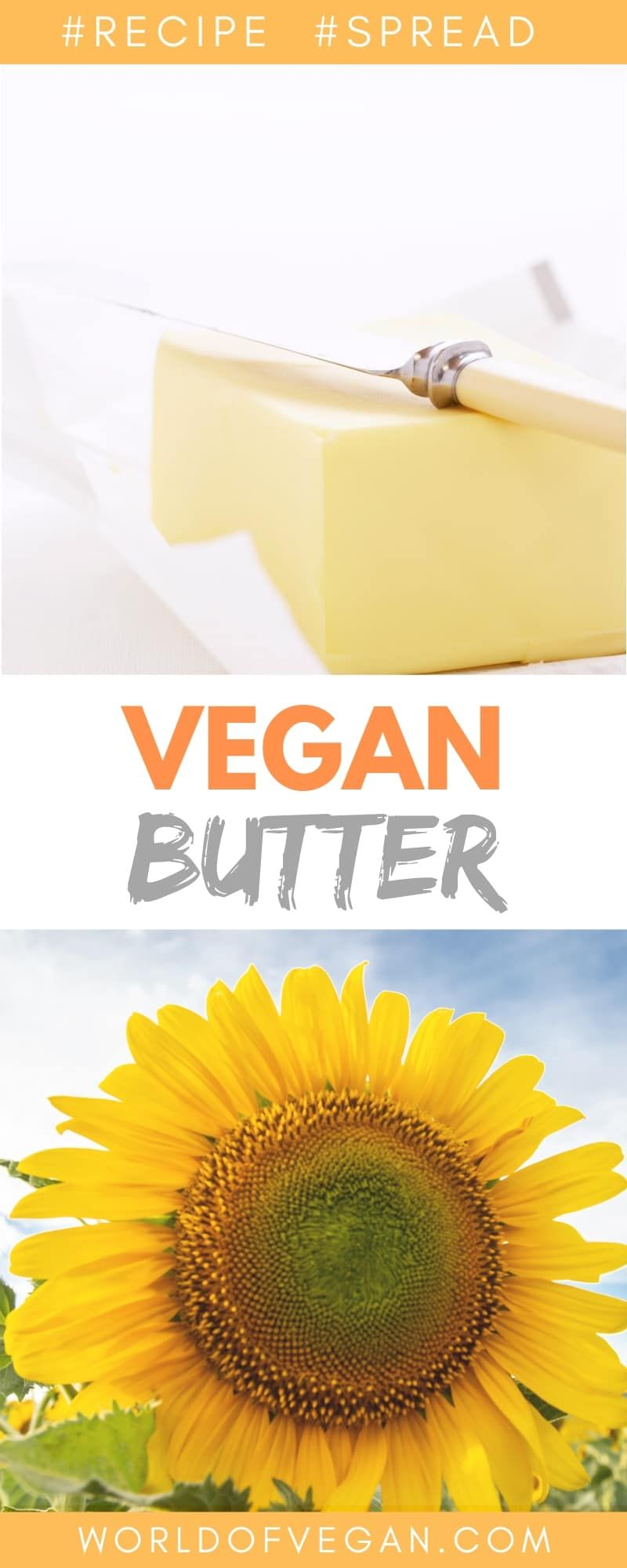 Easy Vegan Butter Recipe The Dairy Detox In 2020 Vegan Butter Butter Easy Vegan