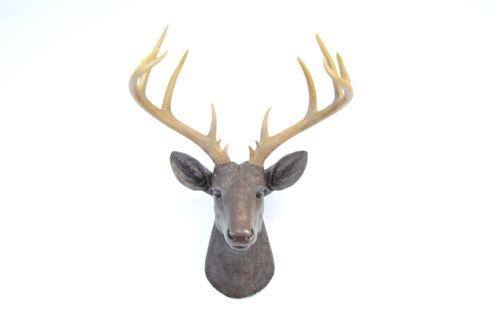 Large 14 Point Deer Head Wall Mount // Espresso Brown With Natural Antlers