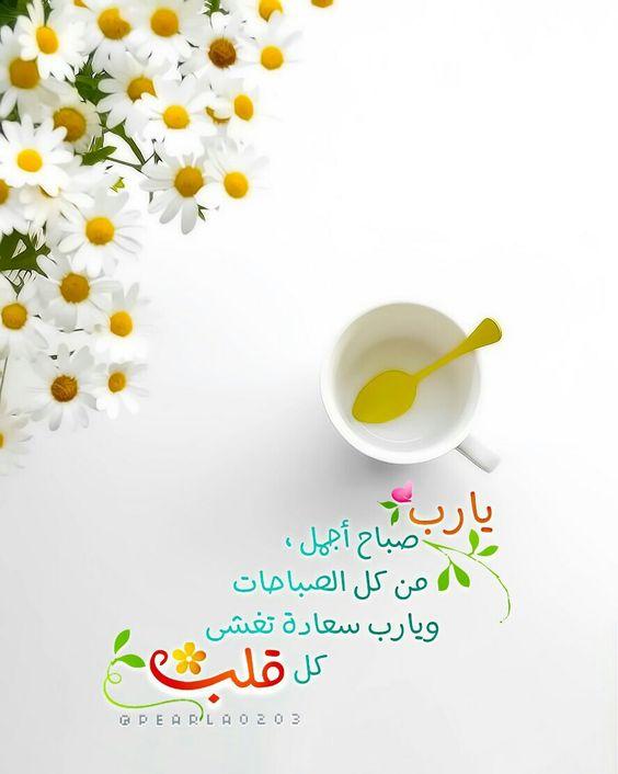 احلى صباحيات حالات واتس صباحيات جديده صباحيات جميلة Zina Blog Morning Greeting Qoutes Glassware