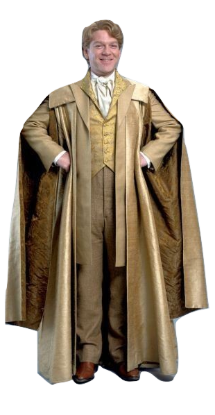 Gilderoy Lockhart Harry Potter And The Chamber Of Secrets Lockhart Harry Potter Harry Potter Costume Harry Potter Cosplay