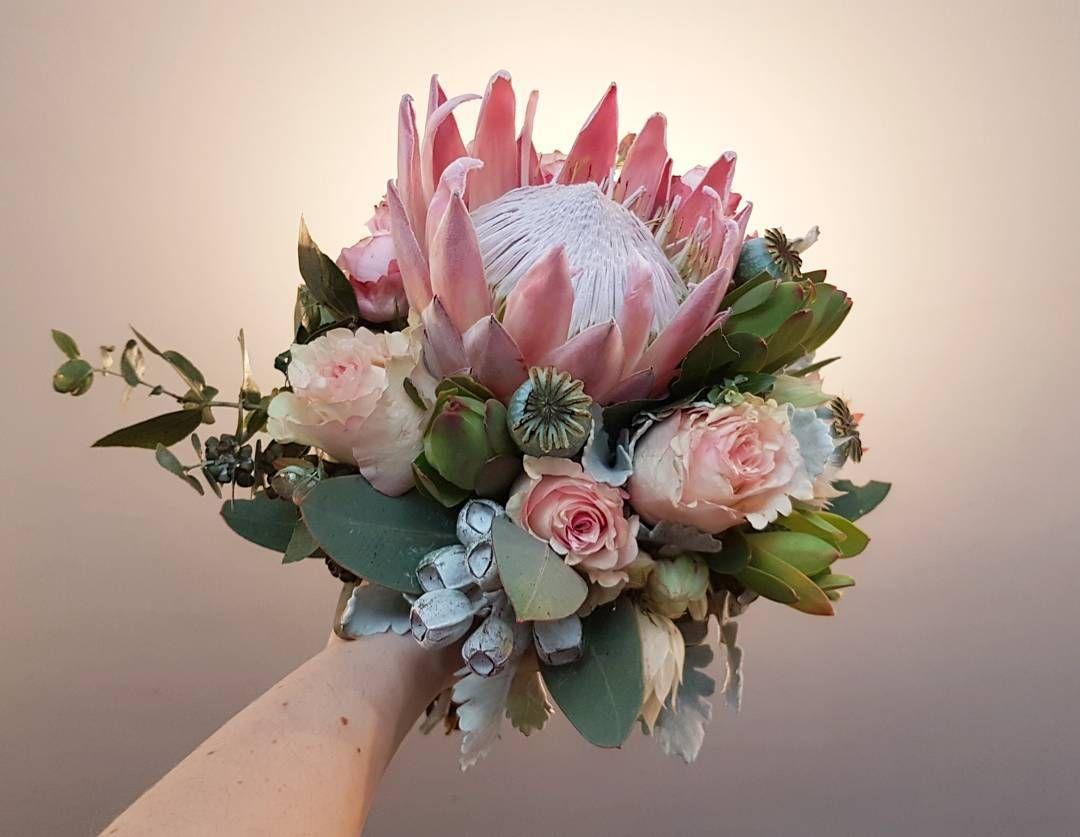 #melbournewedding #instabride Soft and feminine natives for Kirsten #nofilter #kingprotea #roses #nativeflowers #texturedfoliage #freshflowers #melbourneflorist #elwoodflowers #floristlife