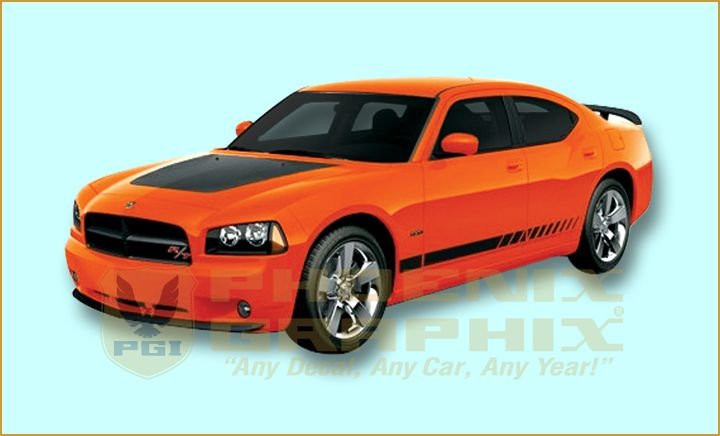 06 07 08 09 2010 Dodge Charger Side Stripe Decal CUSTOM