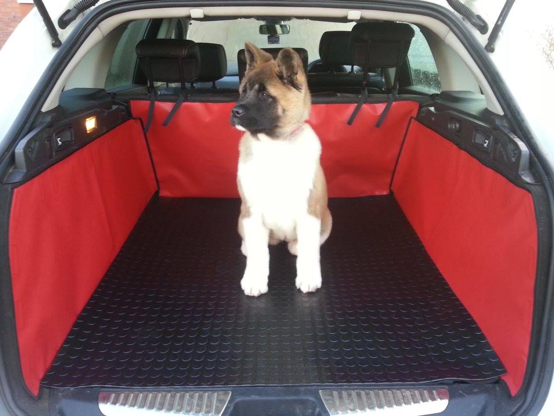 Adorable Stecal Akita Pup In The Renault Laguna Sports Tourer