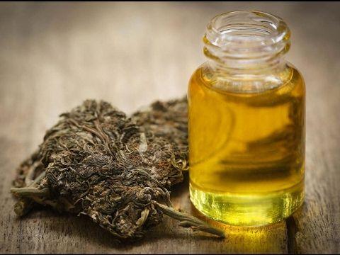 Cannabis Coconut Oil – Easy Recipe Combats Pain, Nausea, Seizures - HEA TUBE -