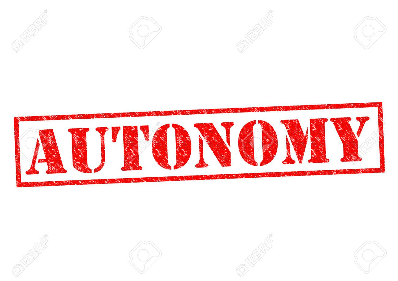 autonomy - Google Search