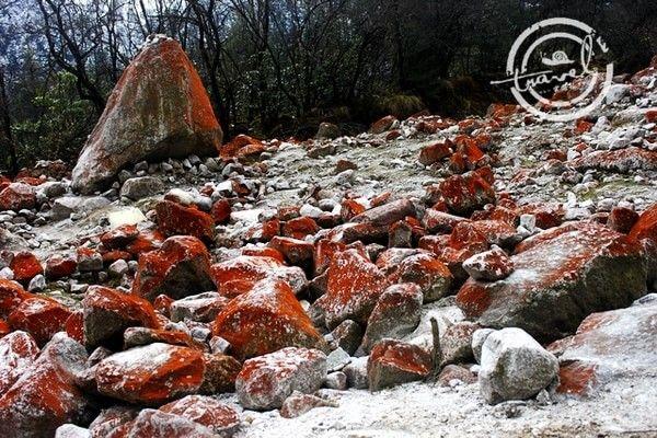Red stones in the Yanzi Valley, Gongga