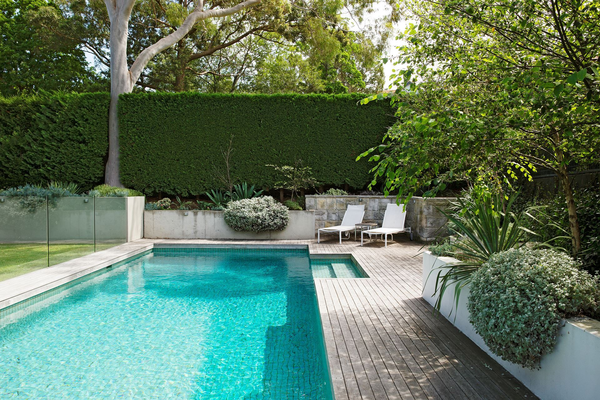 Dreamy Sydney Garden With Contrasting Textures Small Pool Design Backyard Pool Indoor Pool Design Contemporary backyard design with pool