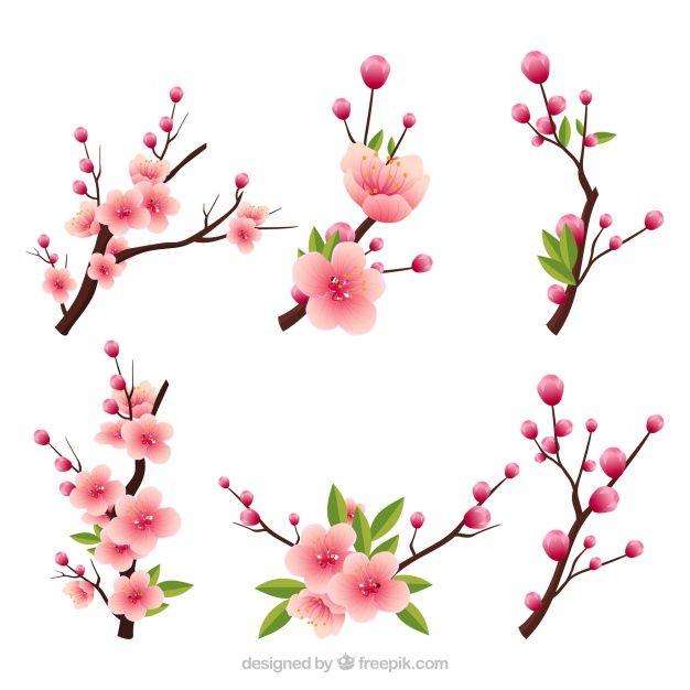 Varias Ramas En Flor En Estilo Realista Vector Gratis Flores De