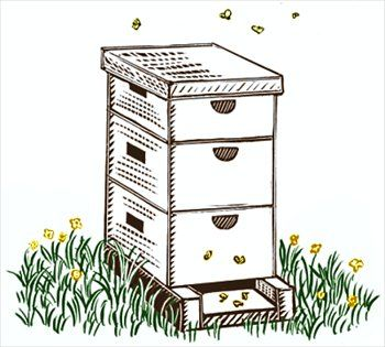 Free Black And White Clipart Of Bee Hives