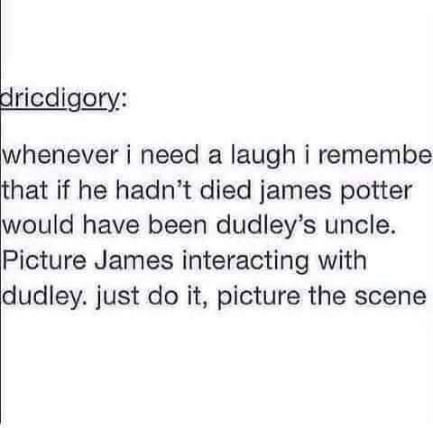 Imagine Sirius interracting with Dudley.. :)))<<< Because why wouldn't Padfoot keep Prongs company when visiting the in laws?