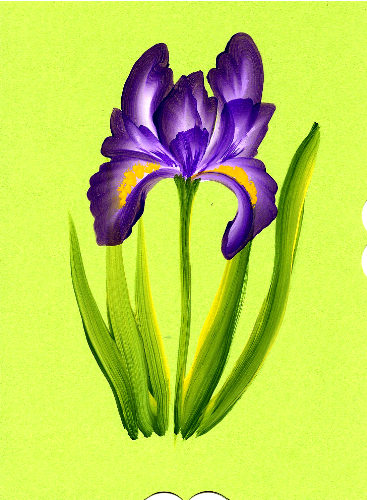 How To Paint Iris Flowers In Acrylic Google Search Iris Painting Acrylic Painting Flowers Flower Painting